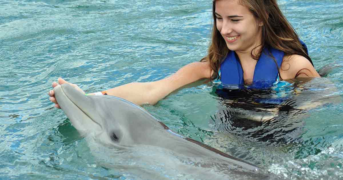 Don't Miss Out on Orlando's Discovery Cove Theme Park